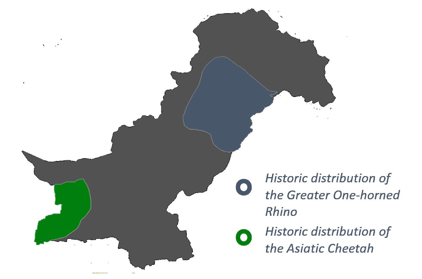 Re-Wild Pakistan